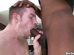 Skinny dude deepthroats huge black dick