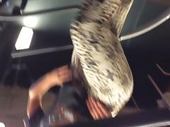 Gym leopard spandex